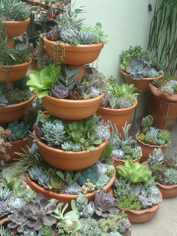 Stacked Succulent Pots You Need To See Today