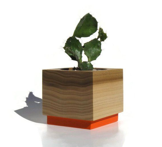 Succulent Planter Poplar Handmade Planter Orange With